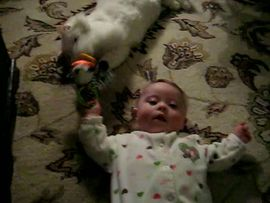 Playing with Fluffy
